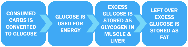 Carb to Glucose Process Map